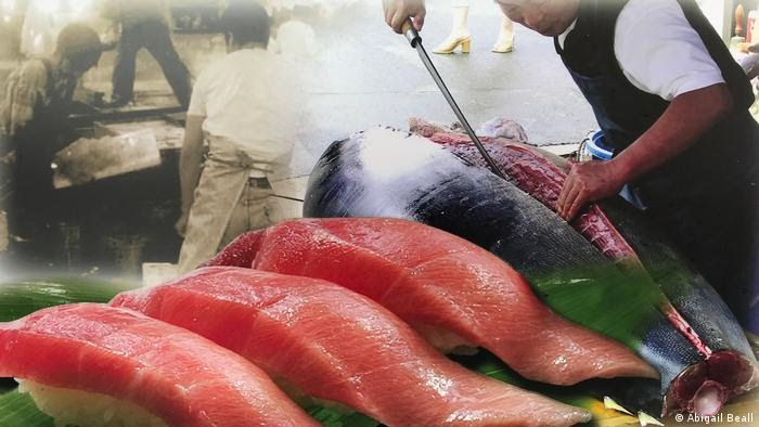 Pesca de atún rojo en Japón.